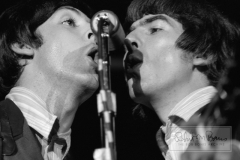 Paul McCartney and George Harrison On Stage, Mid-South Coliseum, Memphis, TN, August 19, 1966 #1